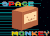 Space Monkey Fly