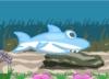 A Little Shark