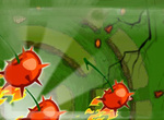 Bugs invasion