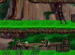 Elitné jednotky: Džungľa