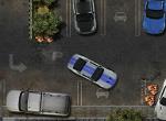 Random Parking