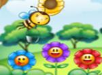 Bee Amass